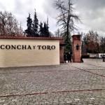 Como foi vistar a vinícola Concha y Toro, em Santigo no Chile