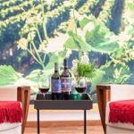 Compras de Natal: bazar de vinhos em SP tem rótulos exclusivos a preços promocionais