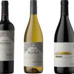 La Pastina lança vinhos orgânicos, veganos e biodinâmicos