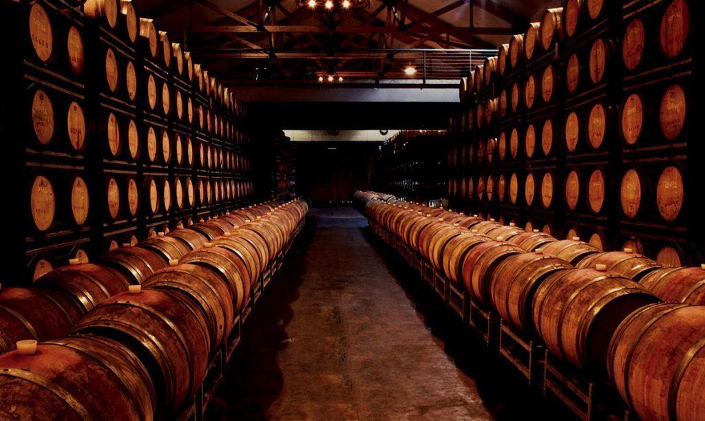 imagens das vinhas e das barricas